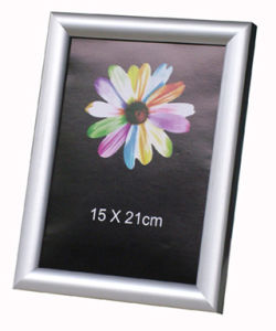 Silver Photo Frame (BG)