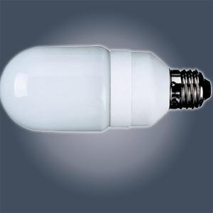 Enery Saving Bulb
