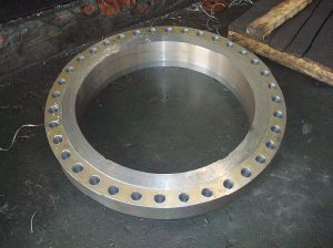 Forging Flange for Vessel pictures & photos
