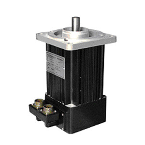 Conventional Low Inertia AC Brushless Servo Motor Bl80 pictures & photos