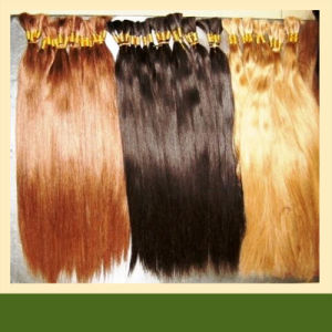 Top Quality European Human Hair Extension for Braiding pictures & photos