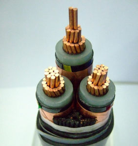 Power Cable (CU / XLPE / PVC / STA / PVC-26 / 35KV 1X500) pictures & photos
