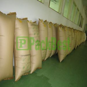 Paper Bag for Truck Packaging (CP0818)