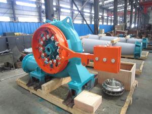 Hydro Turbine/Horizontal Francis pictures & photos