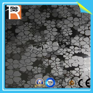 High Pressure Laminate Panel with Flower Pattern (F5) pictures & photos
