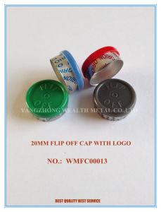 Flip off Lid pictures & photos