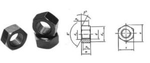 Hex Nut (DIN934 / DIN936 / UNI5587) pictures & photos