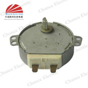 Micro Wave Cooker Motor