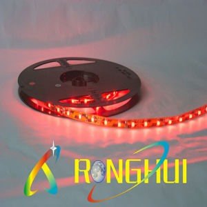 Silicone Tube 3528 Flexible LED Strips (RH-F3528X60T)
