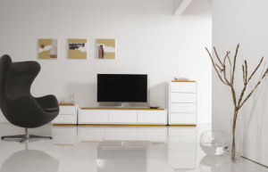 High Glossy Cabinet, TV Cabinet, Modern Cabinet Veneer TV Stand (hl-G055) pictures & photos