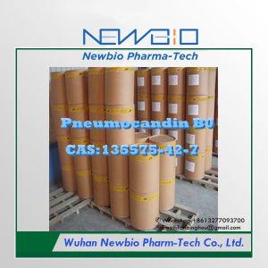 Fine Chemical Pneumocandin B0 (CAS: 135575-42-7)