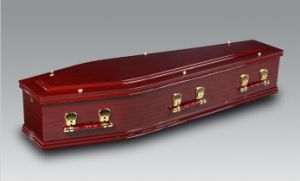 Luxes European Paper Coffins