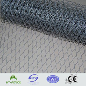 Galvanized Hexagonal Wire Mesh (chicken wire mesh) (HT-G-004) pictures & photos