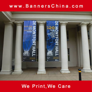 Low Cost Hanging Flag Banner pictures & photos