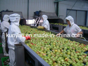 Apple Juice Concentrate pictures & photos