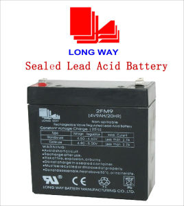 4V 9ah Lead Acid Battery for Fire/ Alarm&Security pictures & photos