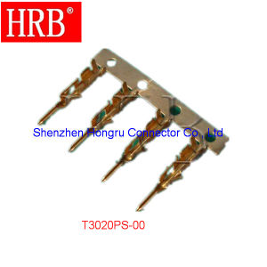 2 Rows 12 Poles Female Connector Housing pictures & photos