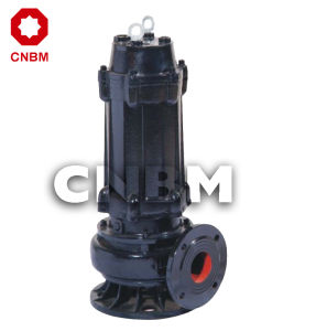 Free Submersible Sewage Pump (WQ Series) pictures & photos