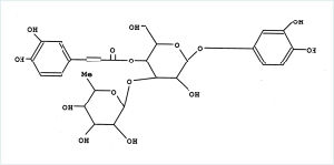 co电子式结构式