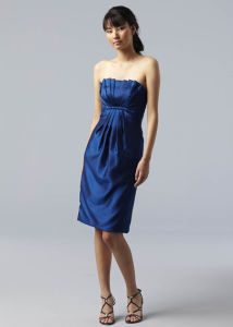 2011 Lovely Holiday Dresses (watter-tbm022)