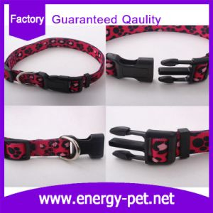 Cute Paws Pet Products of Pattern Dog Collar pictures & photos