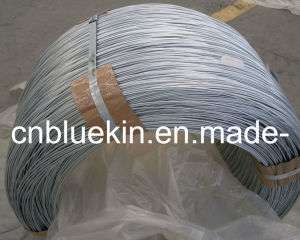Hot Dipped Galvanzied Roping Wire