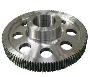 Top Quality Spur Gear (130mm-2000mm)