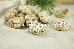 Dried Flower Mushroom, Dehydrated Vegetable