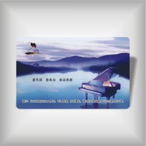 Access Card (LBD-PVC-08)
