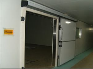 Electronic Control System Cold Room Automatic Freezer Sliding Door pictures & photos