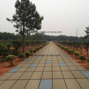 Landscape Square Low Carbon Ceramic Paving pictures & photos