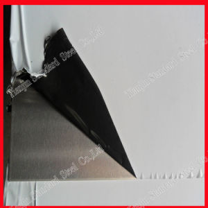AISI 301 (s30100) Ss Perforated Sheet pictures & photos