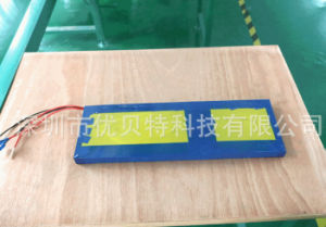 Battery Supply 24V 20ah Lithium Ion Battery Pack for E-Robot Battery pictures & photos