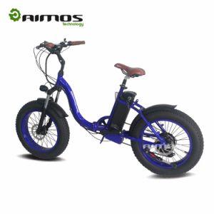 New Products 2017 Ecorider Lithium Battery Folding E Bike/Folding Electric Bike/Mini Bicycle/Foldable Ebike 250W pictures & photos