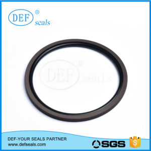 High Speed Rotary Seals pictures & photos