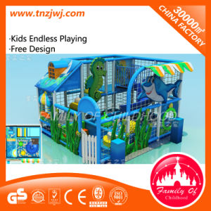 Ce Certified Kid Naughty Castle Indoor Playground pictures & photos