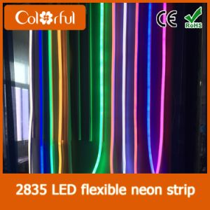 Hot Sale High Quality AC230V SMD2835 LED Neon Sign pictures & photos