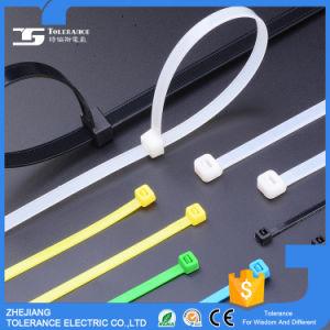 Best Sale Plastic Zip Tie pictures & photos