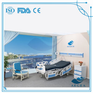 AG-By003c Nursing Home Supplies Medical Equipments ABS Hospital Electric Bed pictures & photos