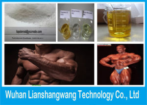 Test E Testosterone Enanthate CAS 315-37-7 for Cutting Cycles pictures & photos