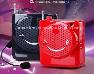 USB TF Card FM Radio Portable Amplifier pictures & photos
