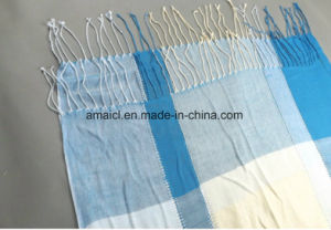 Yarn Dyed Fine Acrylic Checked Scarf (ABF22004025) pictures & photos