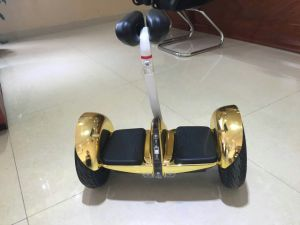10inch 4.4ah 54V Battery Handle Mobility Scooter pictures & photos