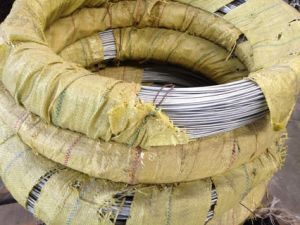 Galvanized Steel Stranded Wire pictures & photos