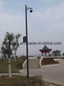 Street Hot-DIP Galvanized Steel Camera Pole