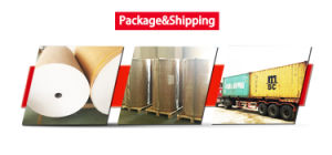 Free Sample High Tranfer Rate 100g Fast Dry Sublimation Paper for Large Format Printer pictures & photos