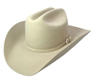 Beige Felt Cowboy Brim Hat pictures & photos
