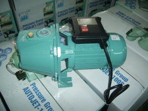 Jet 100s 1HP Self-Priming Garden Water Pump pictures & photos