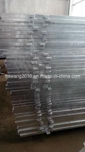 Galvanized Iron Fencing Panel/ Livestock Equipment pictures & photos