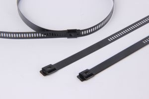 Multi Barb Lock Ladder Type Epoxy Coated Stainless Steel Cable Tie pictures & photos